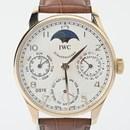 IWC 퍼페츄얼 캘린더 골드 시계(IW502213)