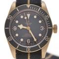 튜더 브론즈 시계(79250BA)